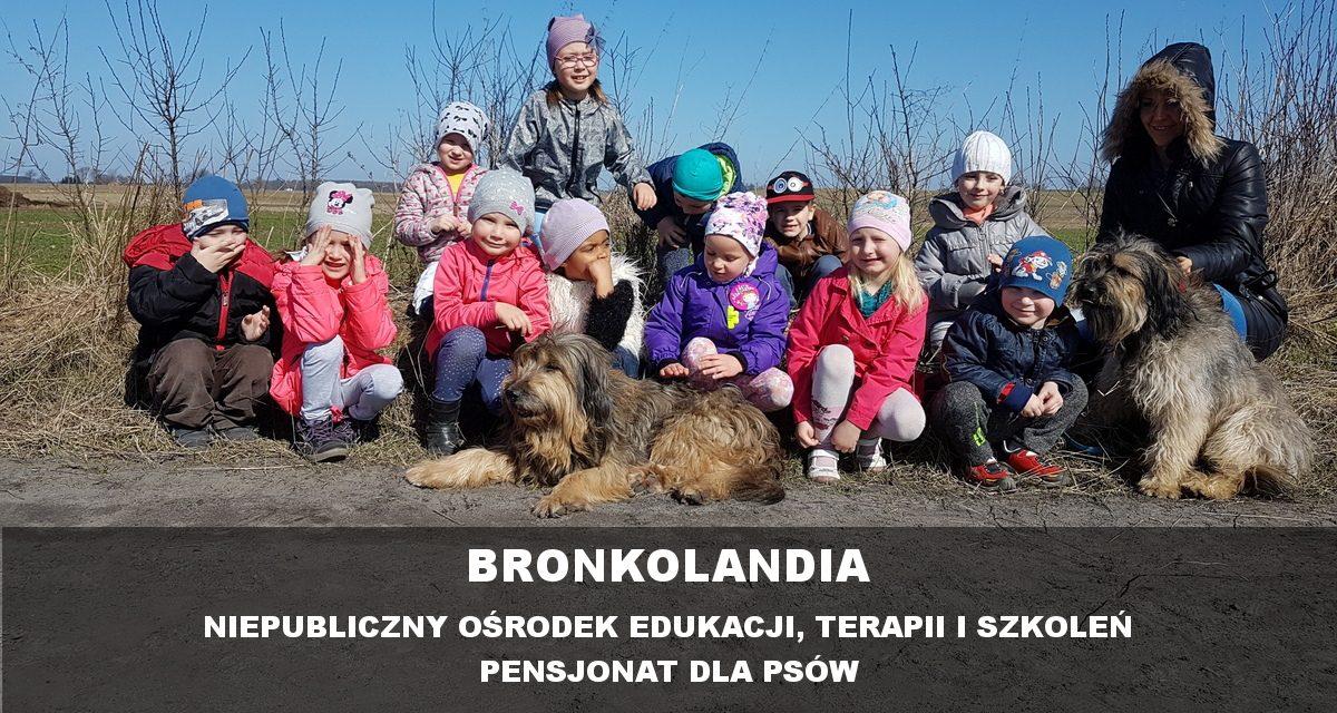 Bronkolandia